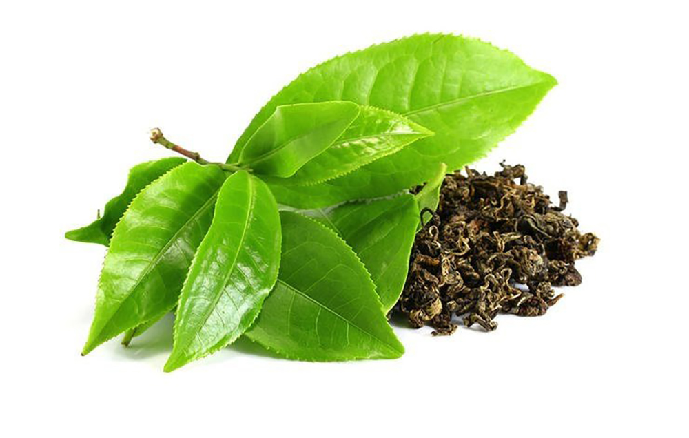 Ingredient Intel: Camellia Sinensis Leaf Extract - beauty finds adventures